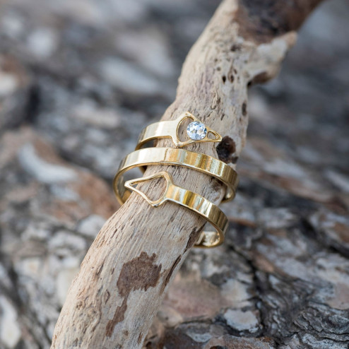 Gold plated double ring